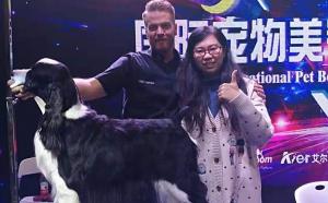 中国宠物美容师俱乐部