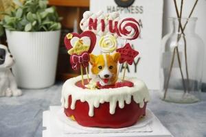 沧州宠物蛋糕
